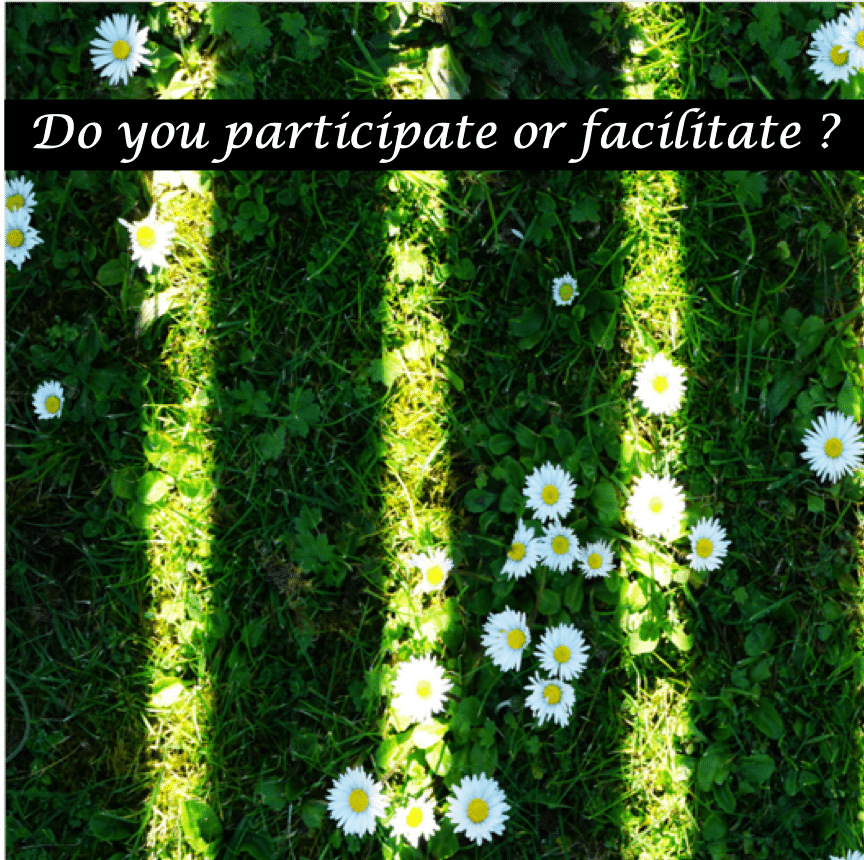 participate-or-facilitate